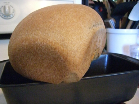 Hot LoafShot